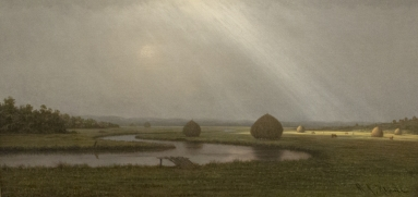 After the Rain in the Salt Marshes Martin Johnson Heade.jpg