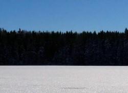 Estonie.jpg